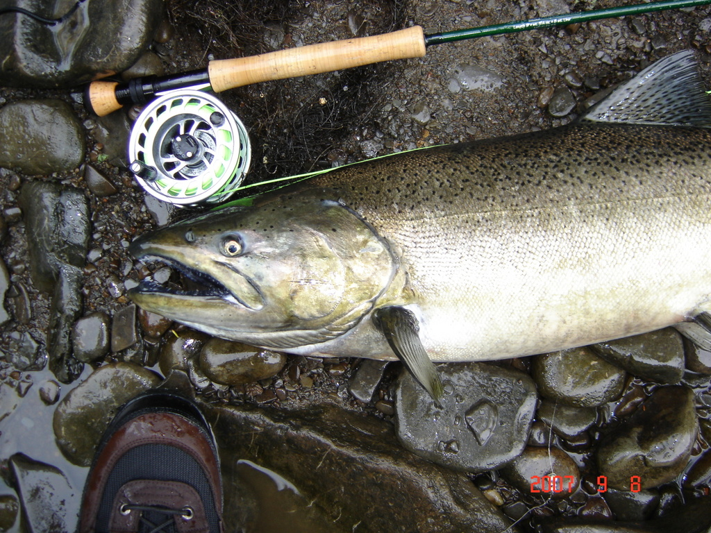 Salmon river pulaski ny for Salmon river ny fishing map